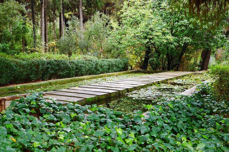 Diomedes Botanical Garden