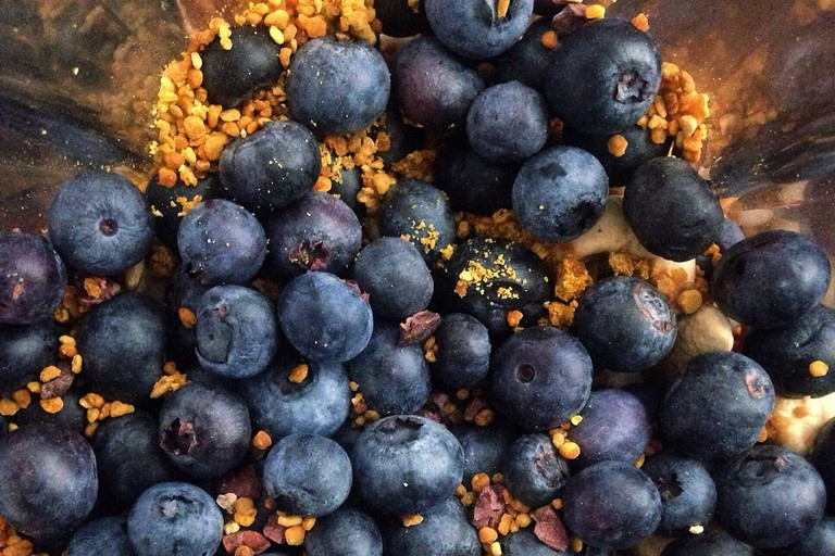 Raw organic blueberries