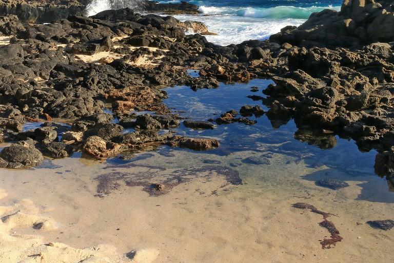 Tidepools at Makapuʻu