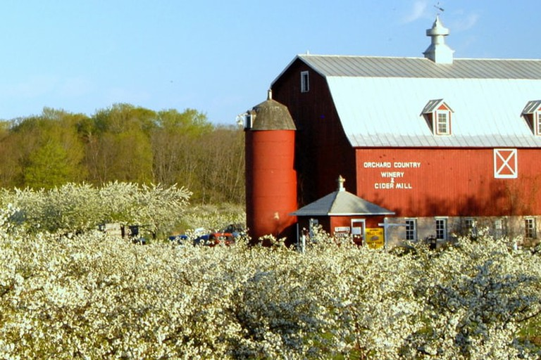 Lautenbach's Orchard Country Winery & Market | © Courtesy of Lautenbach's Orchard Country Winery & Market