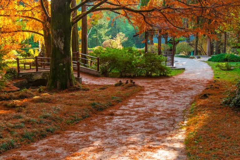 Japanese garden, Sochi, Russia