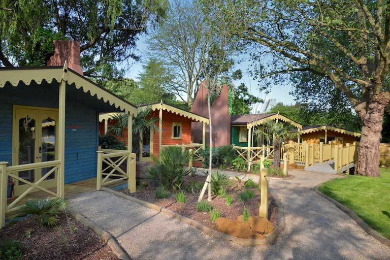 Gir Lion Lodge at ZSL London Zoo