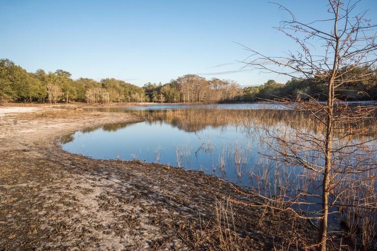 Lake Cypress Springs, Texas