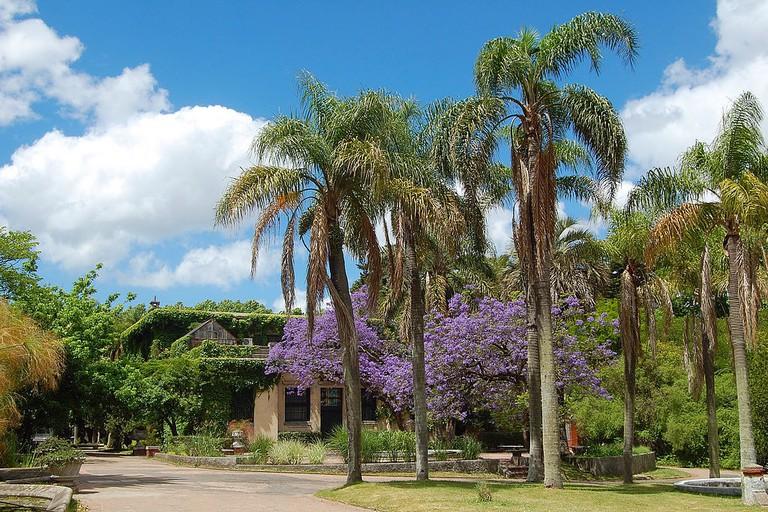 Jardín Botánico, Prado, Montevideo, Uruguay