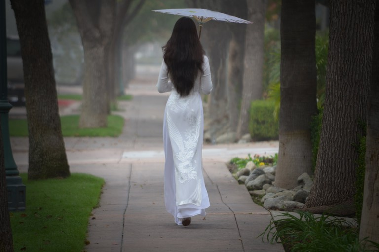 The elegant ao dai