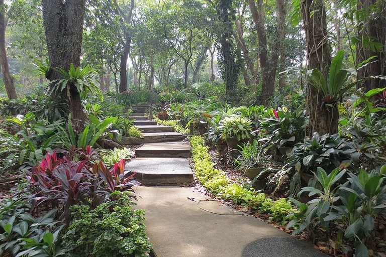 Garden Area of La Mesa Ecopark