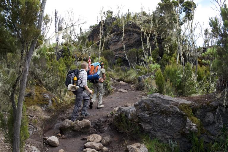 Hiking Mount Kili