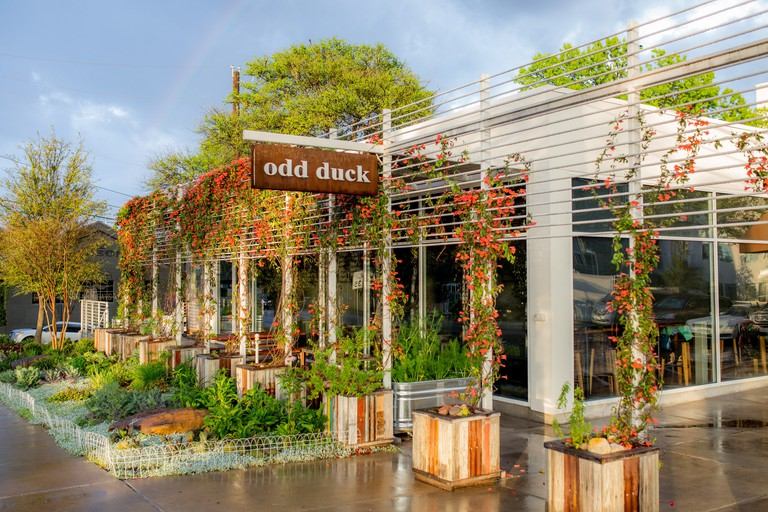 Odd Duck, Austin, Texas, USA.