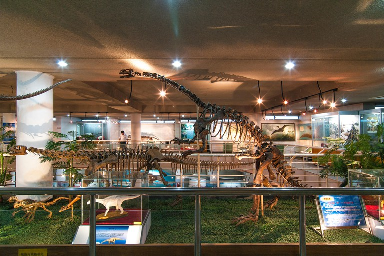 Paleozoological Museum. Beijing. China