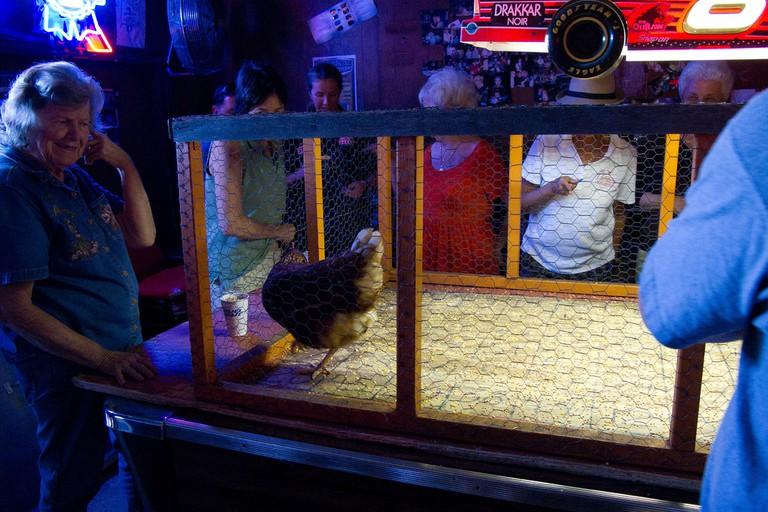 Chicken Shit Bingo at Ginny's Little Longhorn Saloon