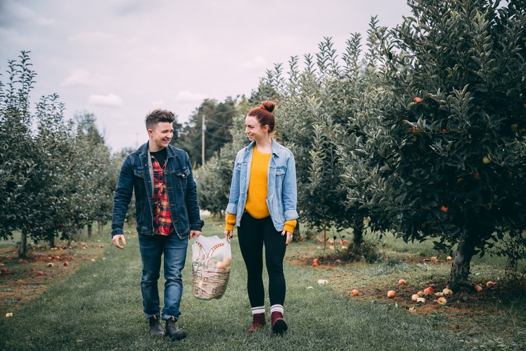 couple, apple orchard