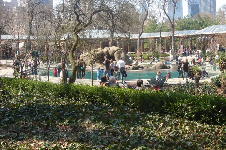 It's a busy day at Central Park Zoo