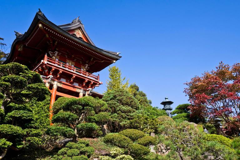 Japanese Tea Garden, San Francisco, California