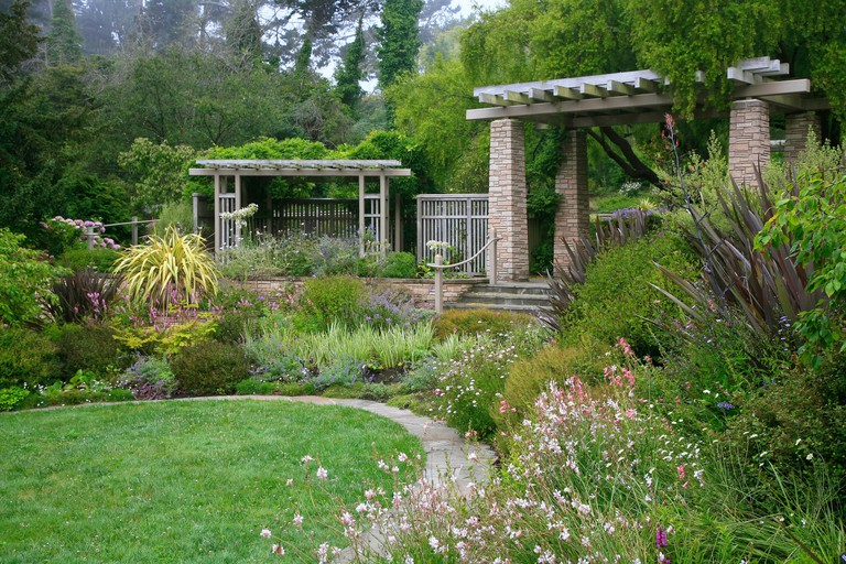 The San Francisco Botanical Garden contains over 9,000 plant varieties