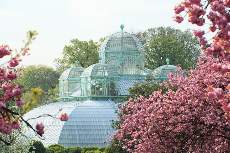Belgium, Brussels, Laeken, the royal castle domain, the greenhouses of Laeken, the greenhouse of Congo.
