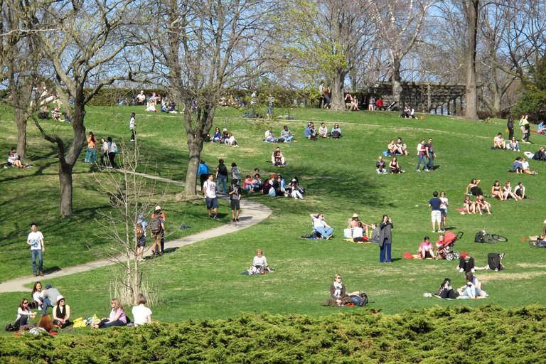 Spring in High Park, Toronto.