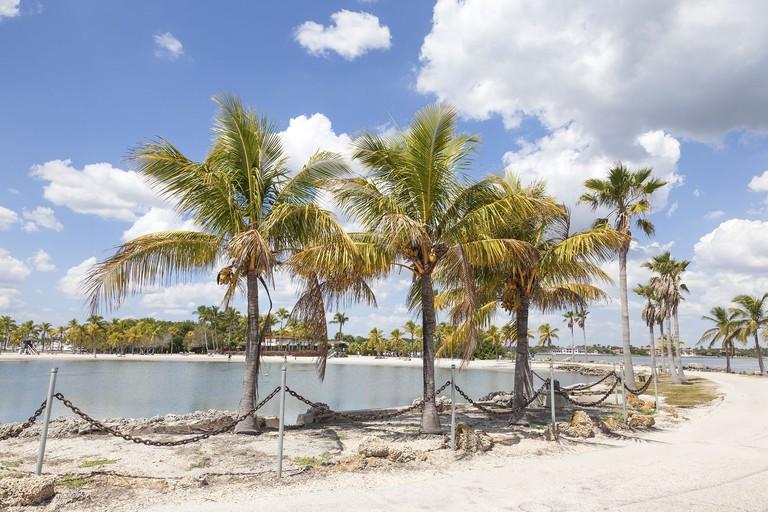 Tropical beach in Coral Gables, Miami
