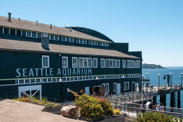 The Seattle Aquarium is on Pier 59, close to various restaurants