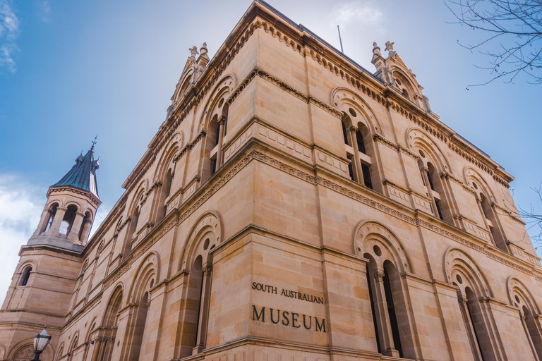 South Australian Museum - Today, the South Australian Museum houses over 4 million artefacts from around the world