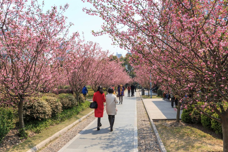 Tourists walking in People's Park, Shanghai