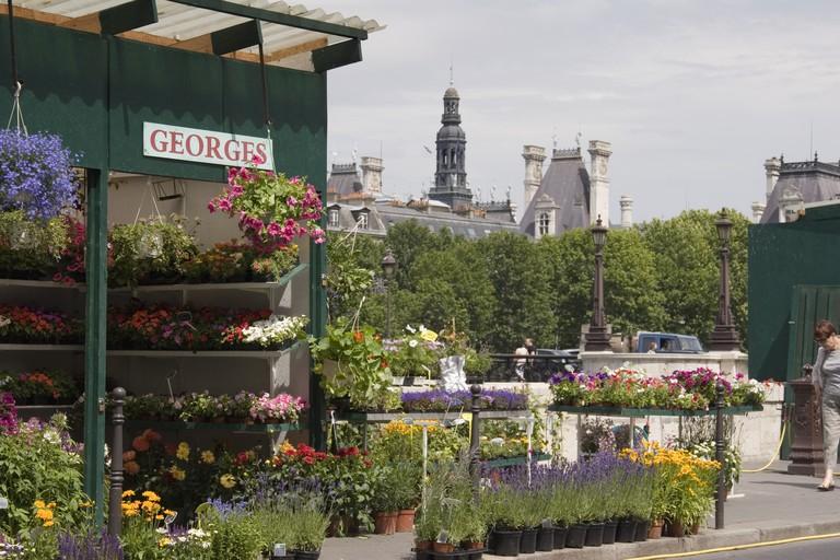 Marche aux Fleurs flower market, Paris