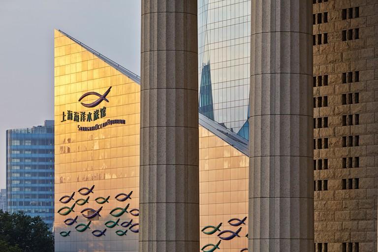 Shanghai, Shanghai, China. Architect: various, 2013. Shanghai Ocean Aquarium and China Ping'an Buildings.