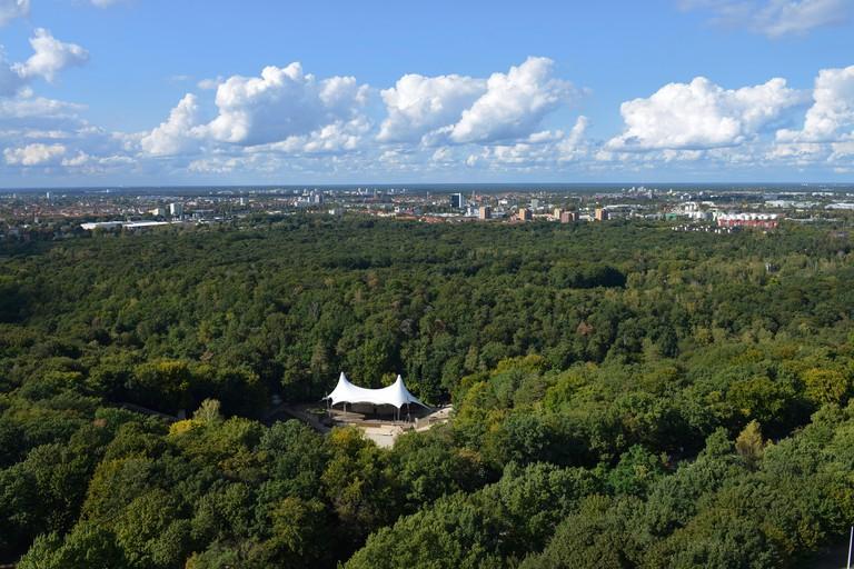 Grunewald forest berlin