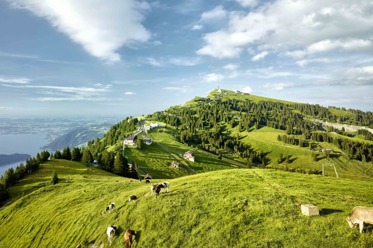 Views across Mount Rigi