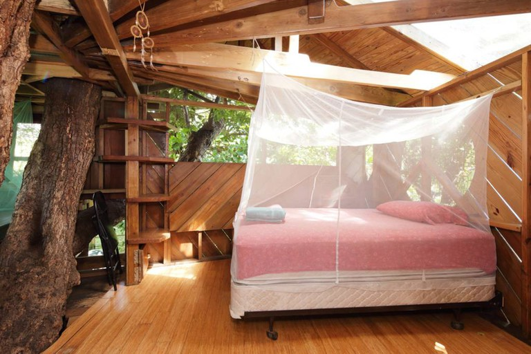 Treehouse Canopy Room: Permaculture Farm, Miami, Florida, USA.