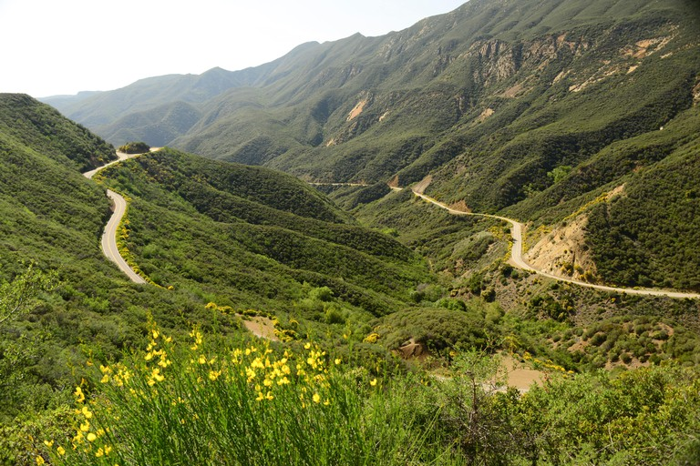Los Padres National Forest near Ojai Southern California, United States of America