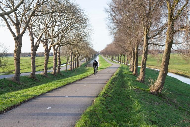 Cyclist in Amsterdam