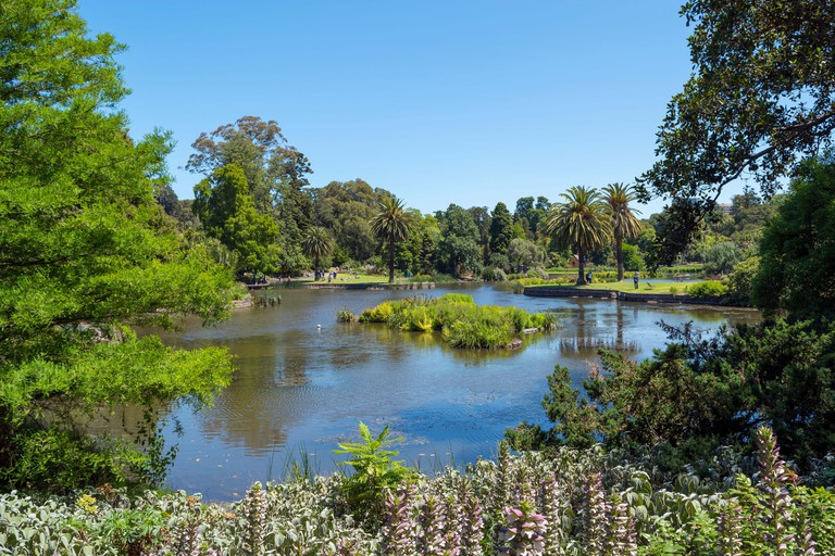 The Royal Botanic Gardens are home to many beautiful sights