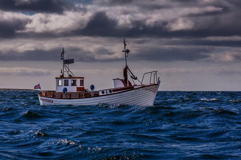 Fishing boat in Reykjavik Harbor, Iceland