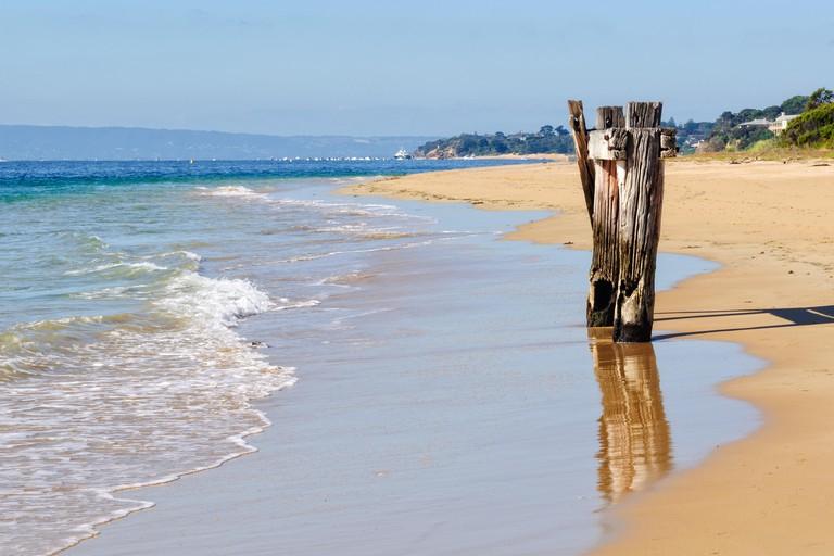 Enjoy dramatic ocean and beach vistas at Point Nepean