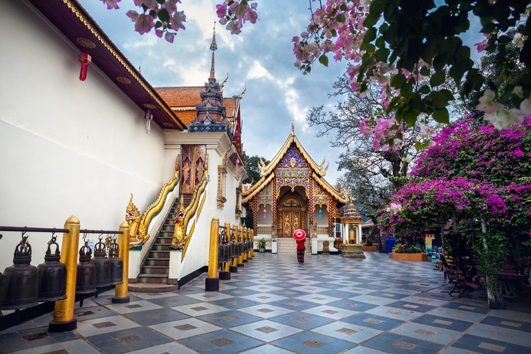 Woman tourist with red traditional Thai umbrella near Pagoda and blooming tree with pink flowers at Wat Doi Suthep in Chiang Mai, Thailand