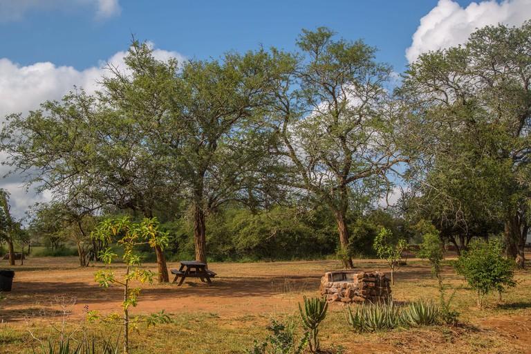 Hlane-Royal National Park, Swaziland.