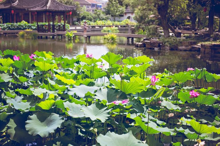 ChangShu Park