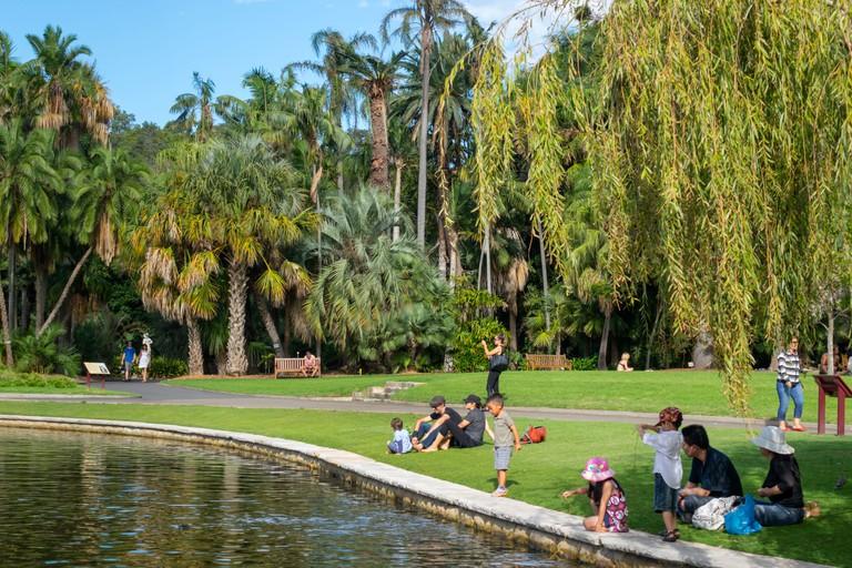 Sydney Australia NSW New South Wales Royal Botanic Gardens Main Pond family park
