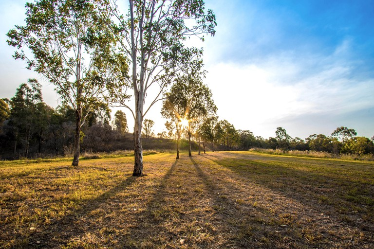 sun setting in the bushland within the Western Sydney Regional Parklands