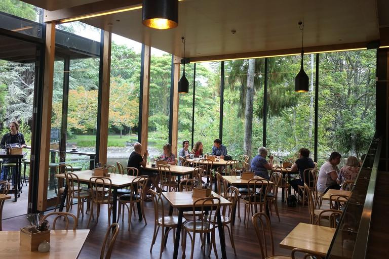 Suter Cafe
