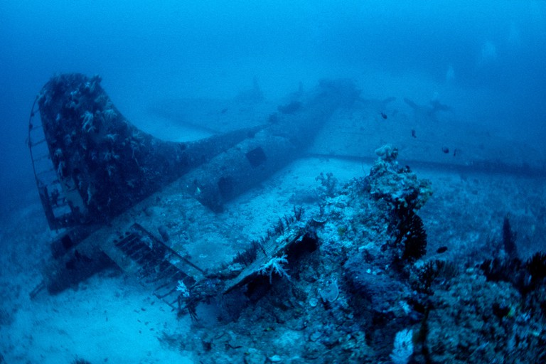 B-17F (called Black Jack) Flying Fortress, American four-engine heavy bomber aircraft, the wreck lies on a seabed at a depth of 45 metres in front of