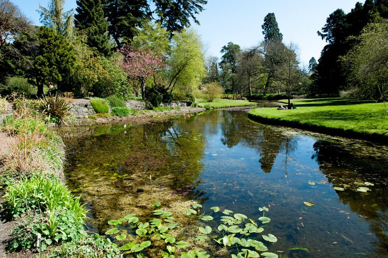 The main pond of The National Botanic Gardens in Dublin, Ireland.