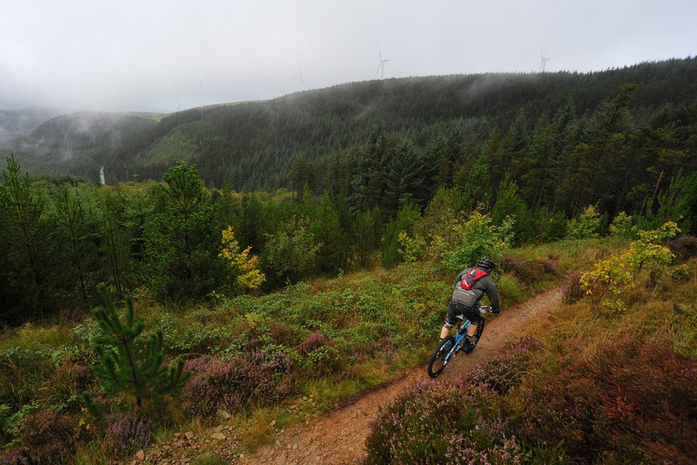 A mountain biker rides a trail at Glyncorrwg in South Wales.