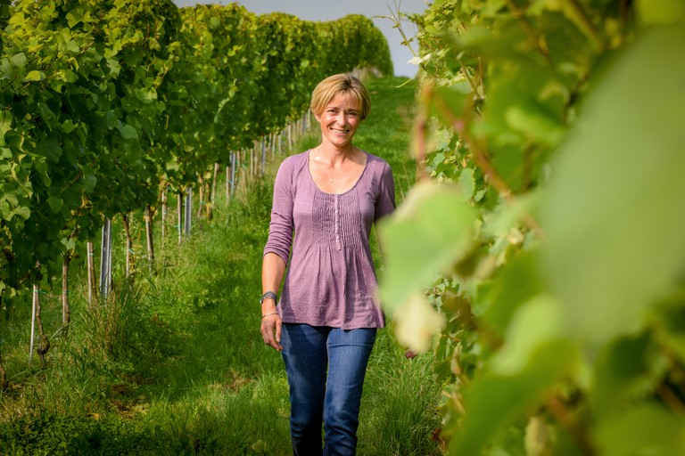 Co-owner Alison Nightingale at her vineyard  Albourne Estate in West Sussex.. Image shot 2014. Exact date unknown.
