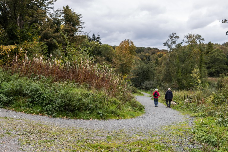 Two walkers and their dog on a forest path in Belvoir Park Forest in South Belfast, N.Ireland.
