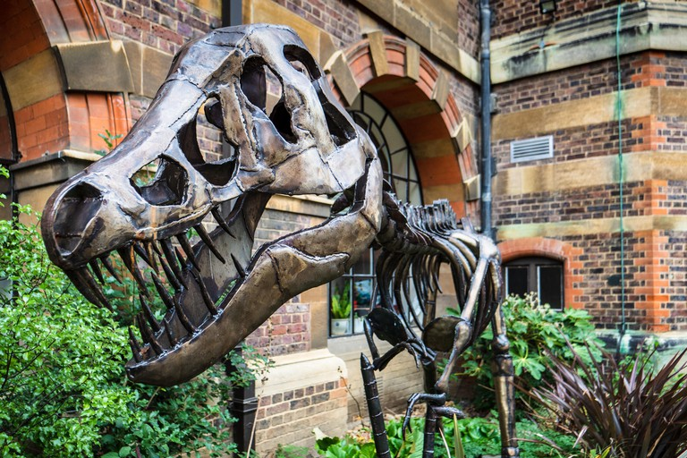 Dinosaur Sculpture - T.rex sculpture outside the Sedgwick Museum of Earth Science. Artist Ian Curran