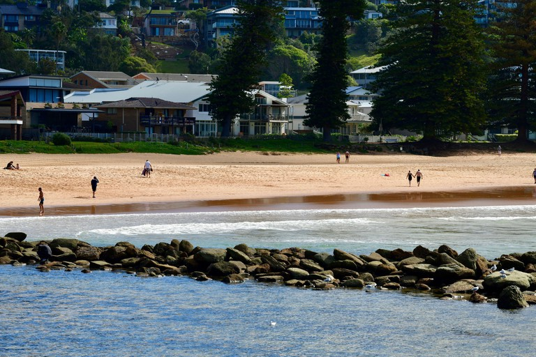 A view of Avoca Beach in New South Wales, Australia