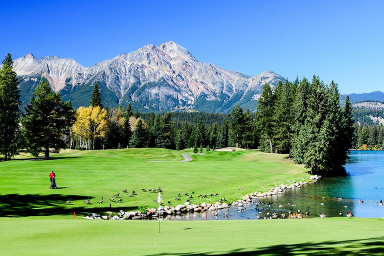 Golfers on the 16th green at the Fairmont Jasper Park Lodge Golf Club course in Jasper, Alberta.  Pyramid Mountain is in the background