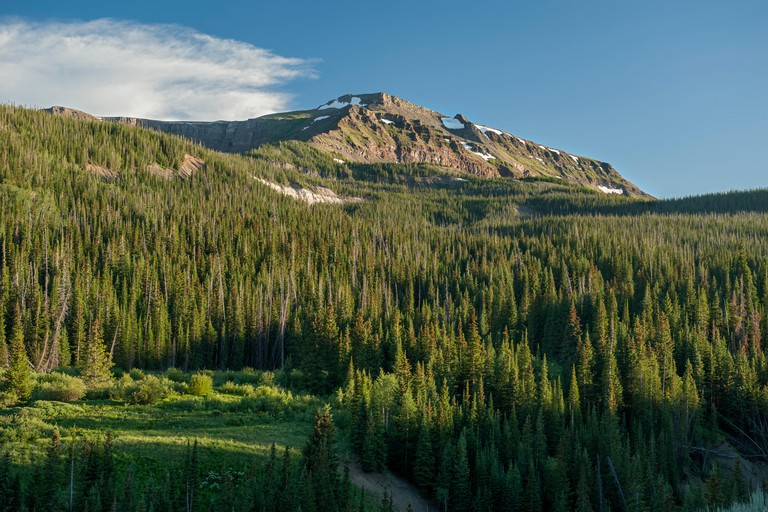 Colorado's Flat Top Mountain, as seen from the Routt National Forest's Bear Lake Campground.