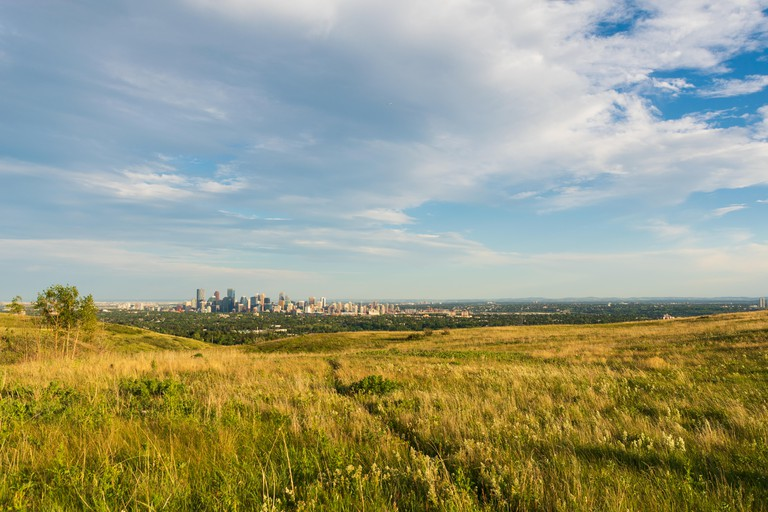 Calgary Skyline from Nose Hill Park